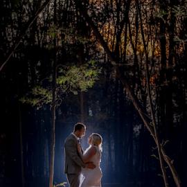 Forrest by Lood Goosen (LWG Photo) - Wedding Bride & Groom ( wedding photography, wedding photographers, backlit, forrest, wedding, weddings, wedding day, pregnant, night, bride and groom, wedding photographer, bride, groom, bride groom )