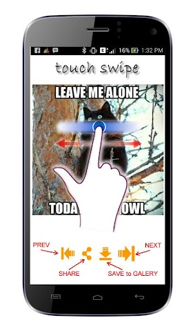 android Cat Meme Picture Screenshot 1