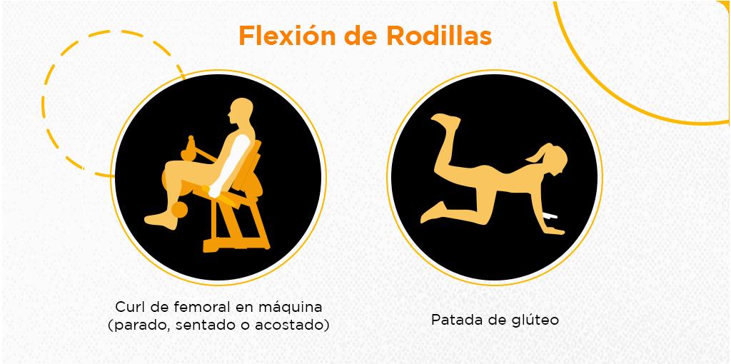 rutina de gym para piernas y gluteos flexion de rodillas