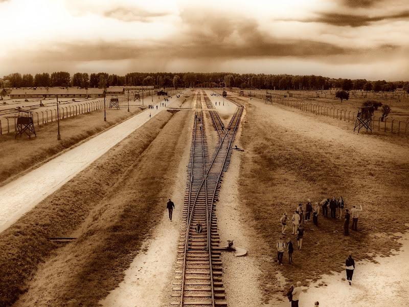 Auschwitz di Cenati Gino