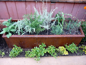 Photo: Another planter box with herbs for garnish, infusions--sage, rosemary, curry, tarragon, oregano, fennel