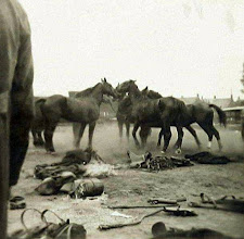 Photo: 1914 - 1918 Militairen met paarden en wapentuig op terrein van de Centrale Werkplaats van BBA te Princenhage