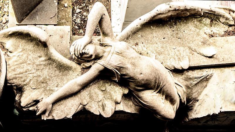 Un Angelo caduto caduto dal cielo di simone_ronca
