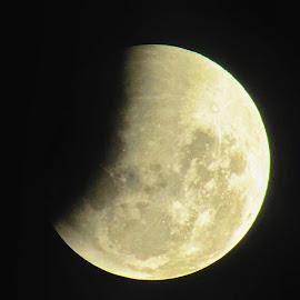 super blue blood lunar moon eclipse by Hartono Wijaya  - City,  Street & Park  Night ( 2018, blood moon, toraja, moon, makassar, blue moon, street photography, eclipse, 150, nature, stars, super moon, indonesia, lunar, night )