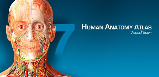 Human Anatomy Atlas - Apps on Google Play