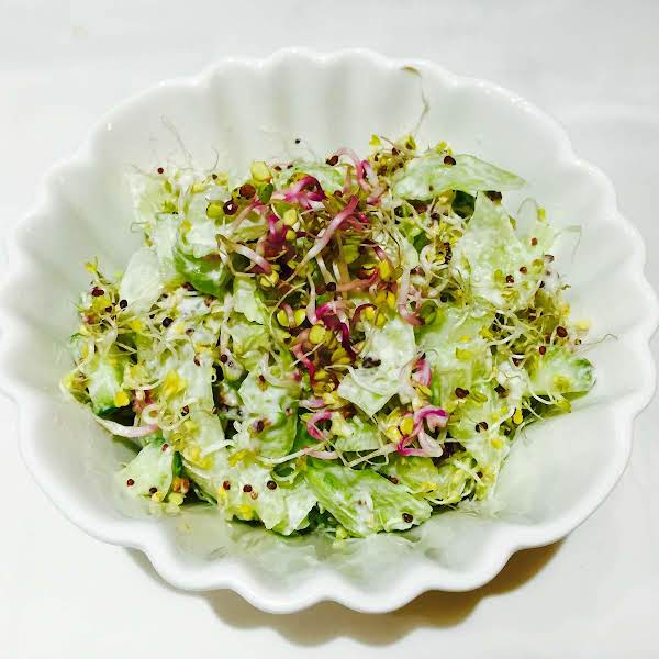 Cucumber, Broccoli And Radish Sprouts Salad Recipe