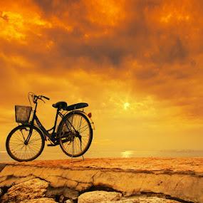 Lonely Morning by Alit  Apriyana - Transportation Bicycles