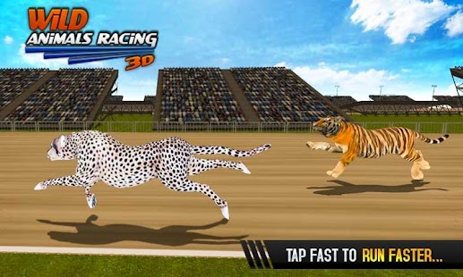 Wild Animals Racing 3D - náhled