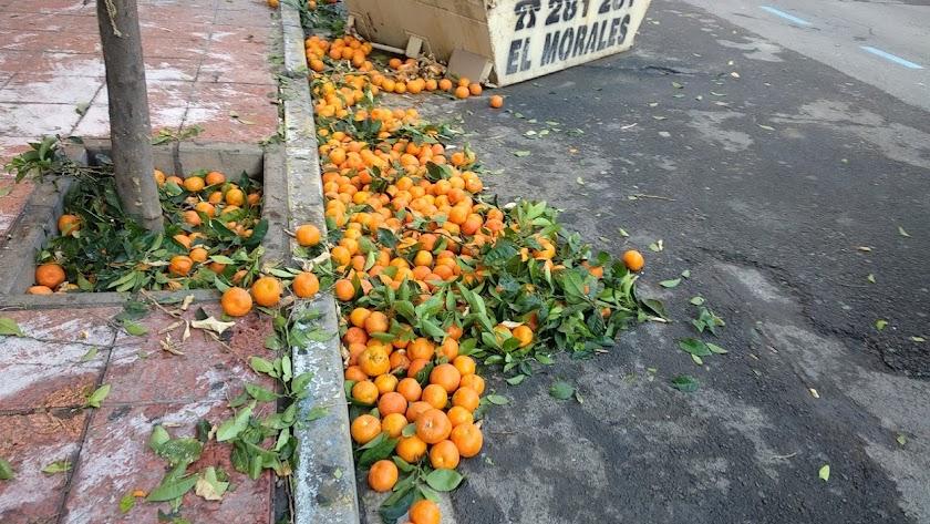 Naranjas en la calle Soldado Español.