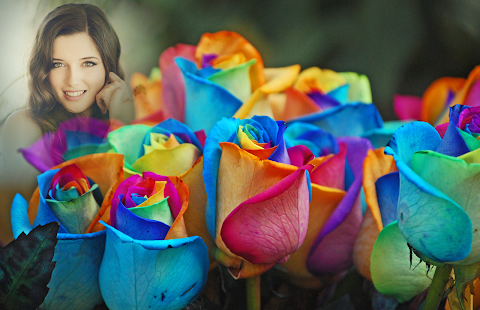 Rainbow Rose Photo Frames - náhled
