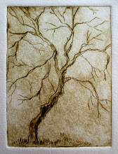 Photo: tree dry-point etching
