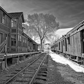 Nevada City Train Station by Twin Wranglers Baker - Black & White Buildings & Architecture (  )