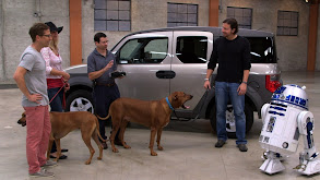 Best Car for Dogs thumbnail