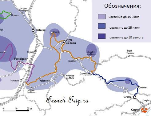 Valensole (Валенсоль), Прованс, Франция - достопримечательности, путеводитель, лавандовые поля на плато Валенсоль