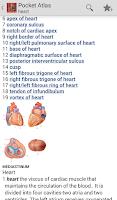 Screenshot of Pocket Atlas of Anatomy TR