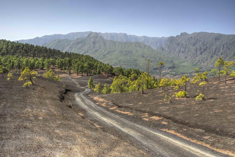 Tra terre vulcaniche di Roberto Simonazzi
