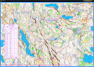 Photo: An exercise with a Karttapullautin map in the northern park of Nuuksio national park, 20121125.