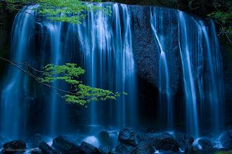 Photo: The Tatsusawa Falls photos at dusk with fresh spring leaves.