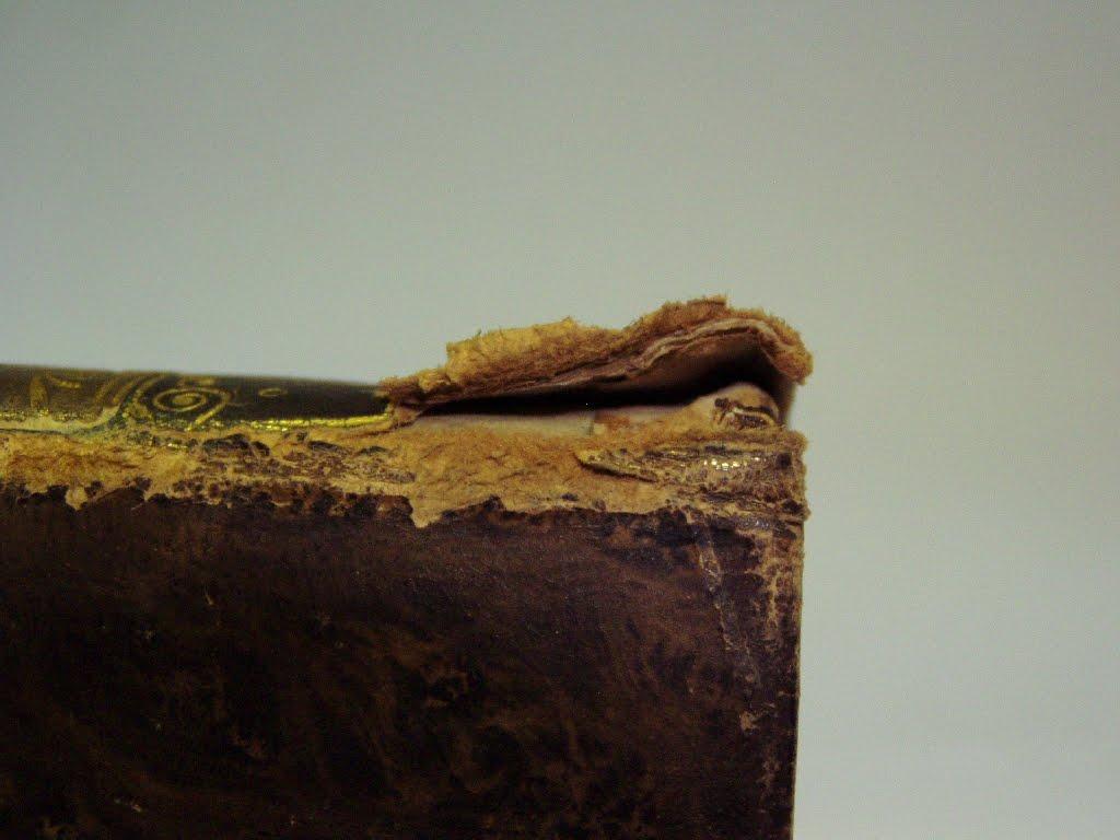 könyvgerinc