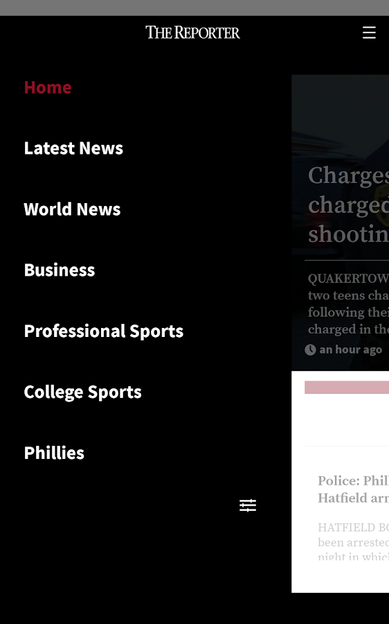 The Reporter for Android- screenshot