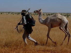 Photo: erste Boten der Wüste