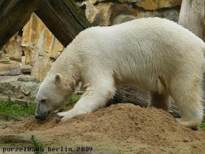 Photo: Der Sandhaufen wird inspiziert ;-)