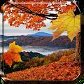 Falling Leaves Live Wallpaper APK