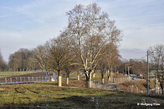 """Photo: Natur und Tierwelt haben in Stuttgart keine Chance: Das mit """"Füßen getretene"""", mit Rohren durchzogene und für S21-Bauzwecke entwittmete, eingezäunte und aus- bzw. abgeholzte Landschaftsschutzgebiet FFH Rosensteinpark an der Ehmannstraße"""