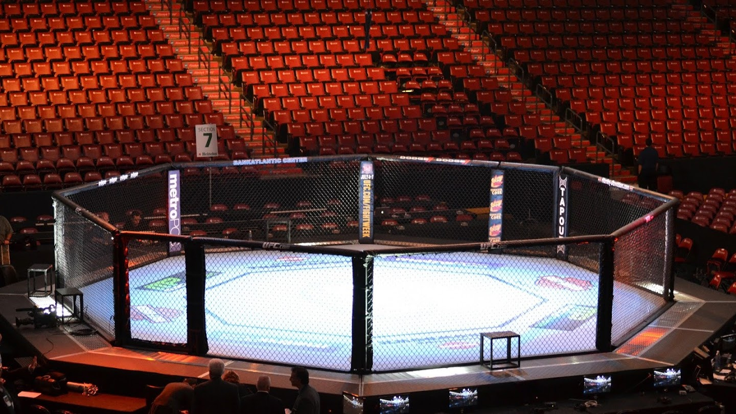 UFC's Road to the Octagon