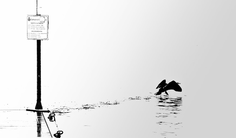 camminando sull'acqua di emil