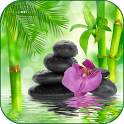 Relax Meditation Sounds icon