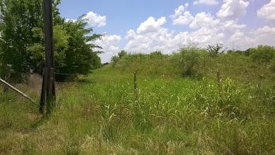 Photo: Rye School Loop Swale, near Lake Bryan; at Rye Loop Road and OSR, near 1687: Zebulon Pike camped near here