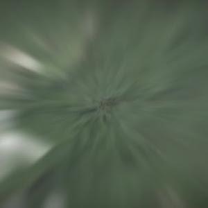 ジムニーのカスタム事例画像 Suguru.(・ω・)さんの2020年03月07日14:24の投稿