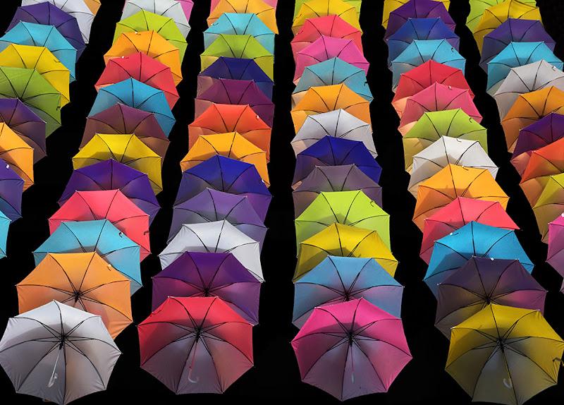 Una pioggia di ombrelli di Clara