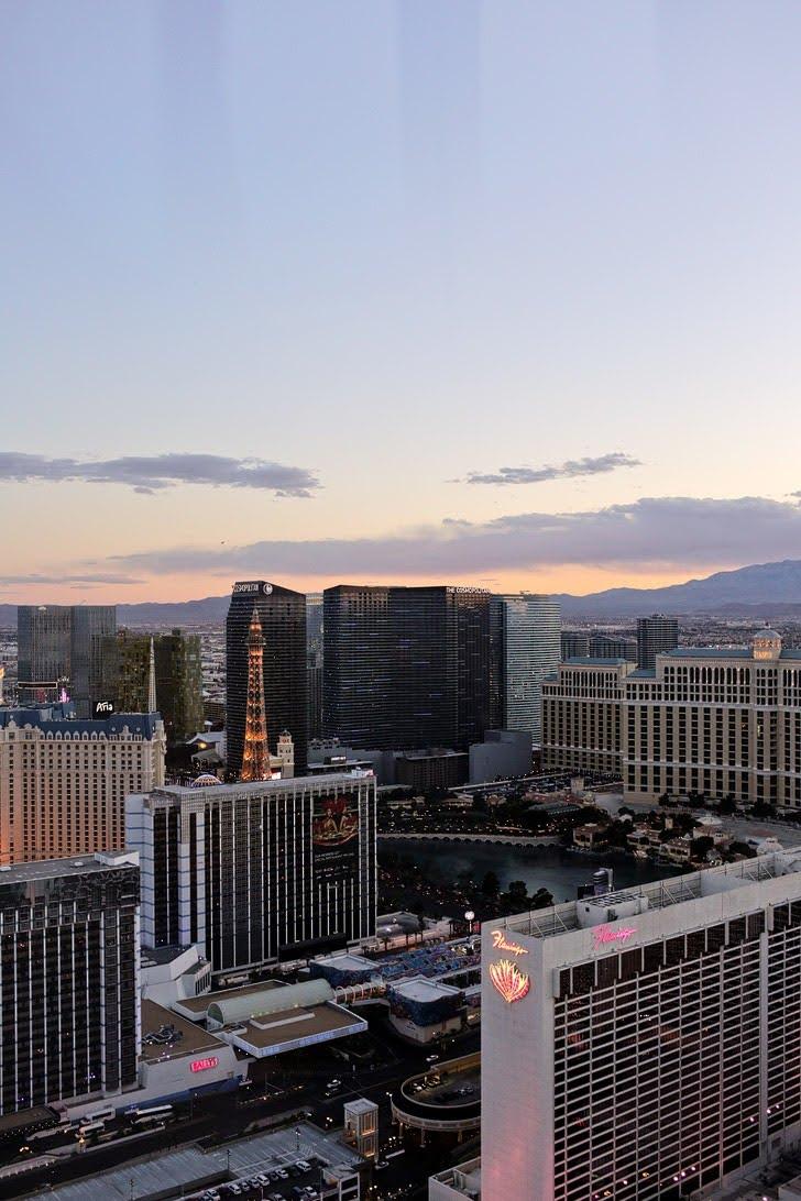 Las Vegas Ferris Wheel View.