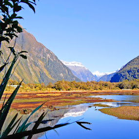 Milford Sound by Tony Buckley - Landscapes Mountains & Hills
