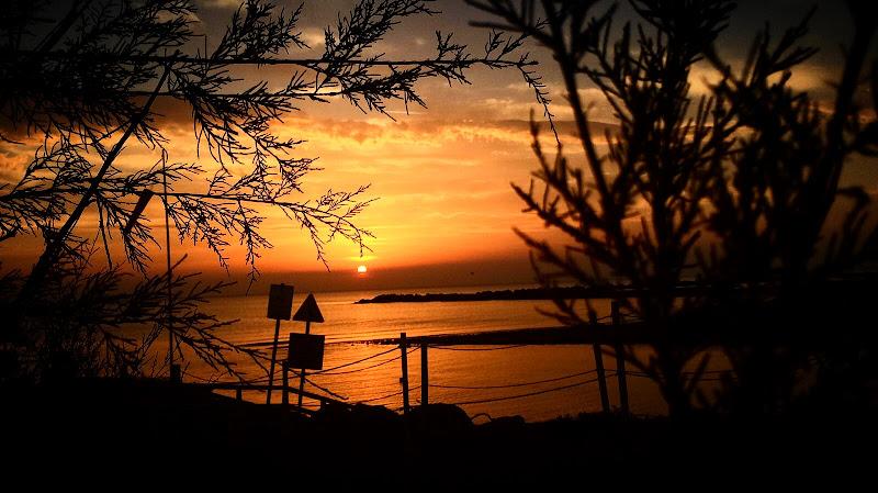 Tra alberi e mare, il sole. di AntoFusco