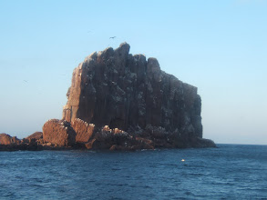 Photo: The next day we visit Los Islotes, a sea lion rookery.