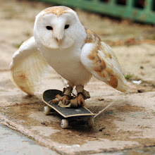 Photo: Ferrari Press Agency   118/3/2010    Owl1