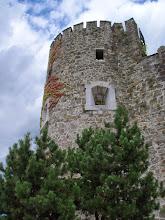 Photo: Półokrągła wieża obronna zwieńczona blankami, zamku w Gorizia.  Wydaje się, jakby zaprojektowana została w otaczającą przyrodę.