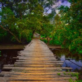 Pinang Merah by Hendri Suhandi - Landscapes Forests ( home, village, forest, bridge, landscape, river, borneo )