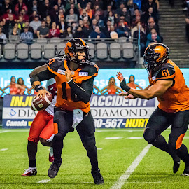Looking For A Hole In Defence by Garry Dosa - Sports & Fitness American and Canadian football ( sports, teams, players, cfl, black, spectators, football, people, professional, orange, red, white, indoors, stadium )