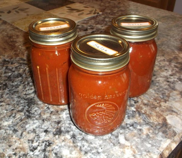 Zesty Salsa (for Canning) Recipe