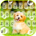 Cute Puppy Pet Keyboard Background icon