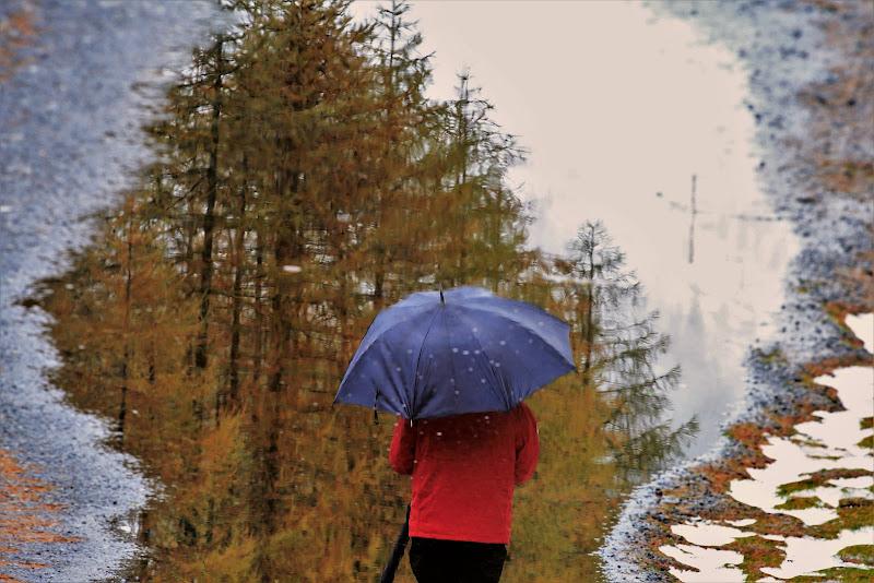 A passeggio con l'ombrello di ScrofaniRosaria