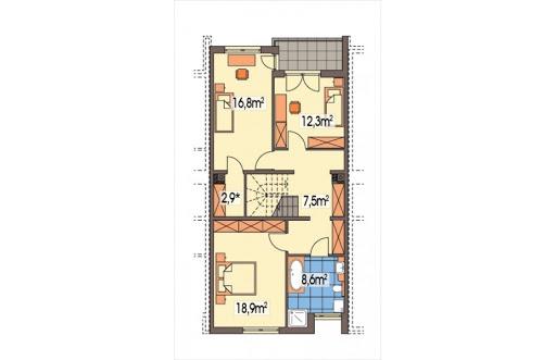 Imbir segment środkowy - Rzut piętra