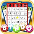Bingo: New Free Cards Game Vegas and Casino Feel