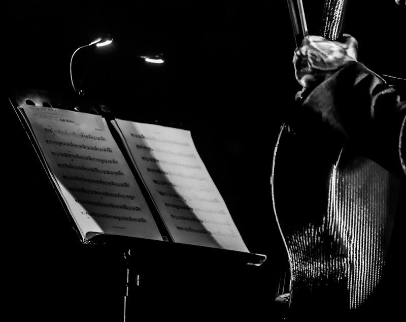 la musica è cultura...sempre! di Renata Roattino@jhonninaphoto