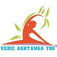 Vedic Ashtang Yog photo 1