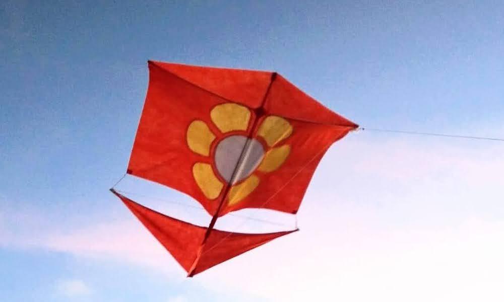 Roller Flower Kite